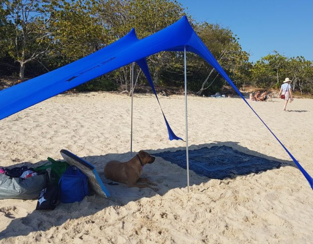 Dog beach 3 (1)